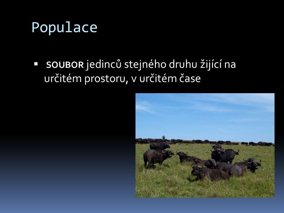 Populace soubor jedinců stejného druhu žijící na určitém prostoru, v určitém čase