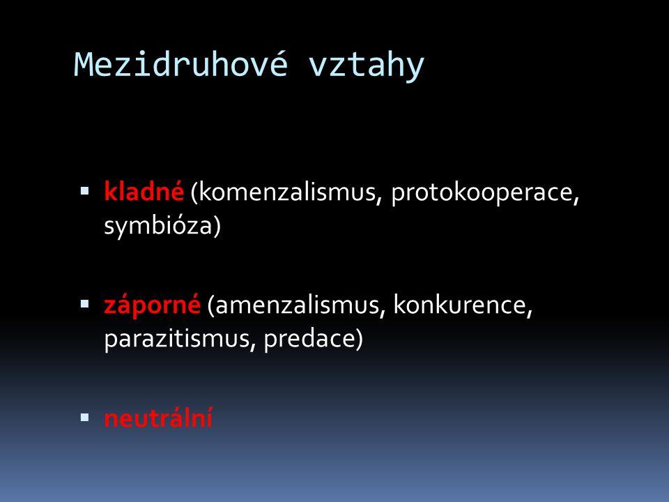 Mezidruhové vztahy kladné (komenzalismus, protokooperace, symbióza)