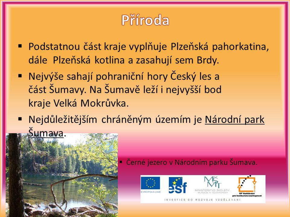 Příroda Podstatnou část kraje vyplňuje Plzeňská pahorkatina, dále Plzeňská kotlina a zasahují sem Brdy.