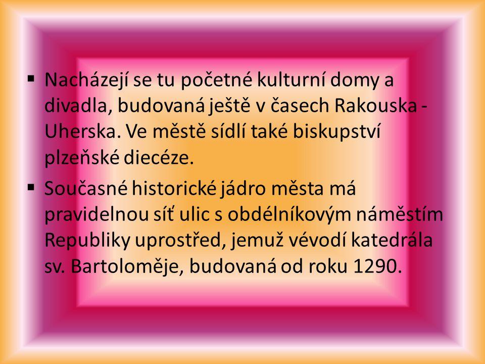 Nacházejí se tu početné kulturní domy a divadla, budovaná ještě v časech Rakouska -Uherska. Ve městě sídlí také biskupství plzeňské diecéze.