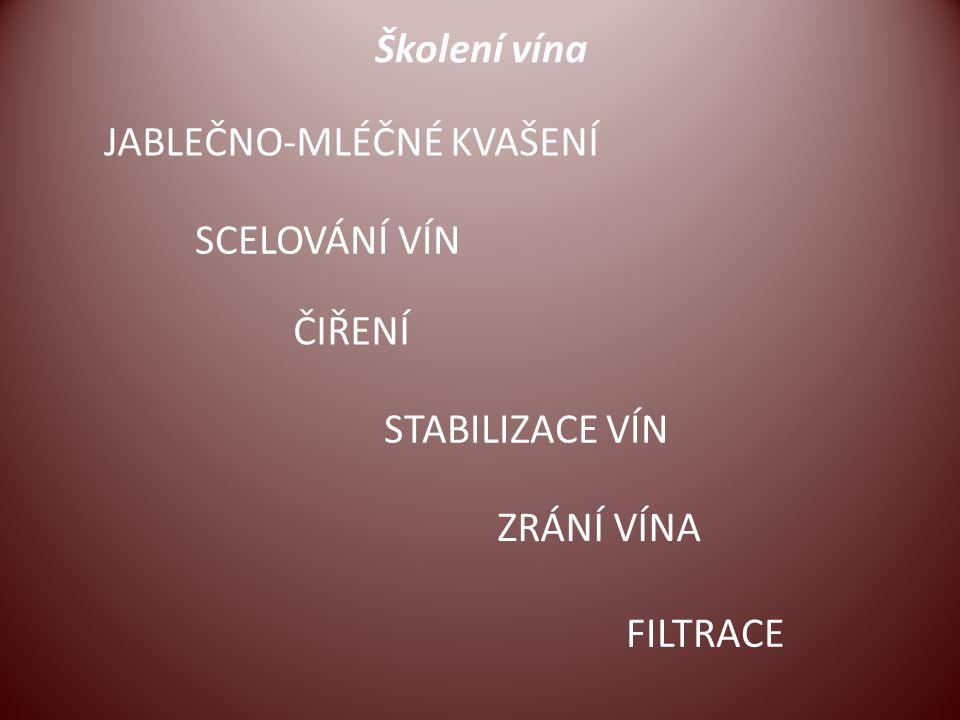 Školení vína JABLEČNO-MLÉČNÉ KVAŠENÍ SCELOVÁNÍ VÍN ČIŘENÍ STABILIZACE VÍN ZRÁNÍ VÍNA FILTRACE
