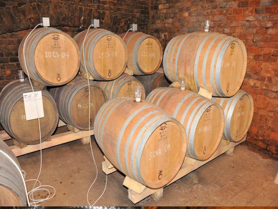 Zrání vína V této fázi se dotváří chuť a aroma vína.