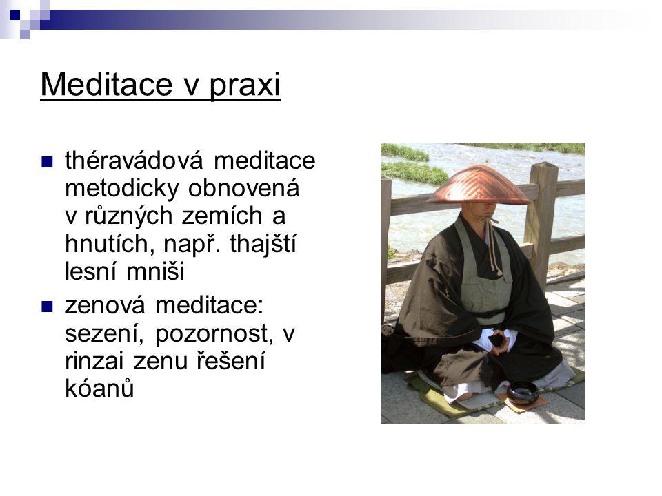 Meditace v praxi théravádová meditace metodicky obnovená v různých zemích a hnutích, např. thajští lesní mniši.