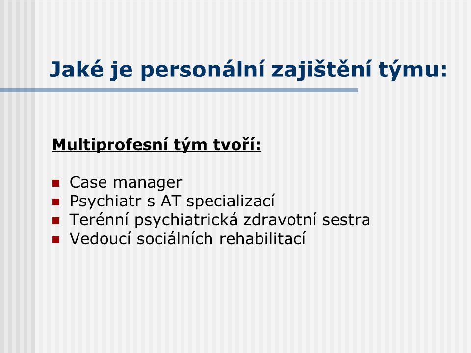 Jaké je personální zajištění týmu:
