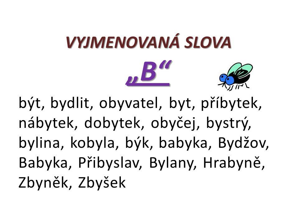"""VYJMENOVANÁ SLOVA """"B"""