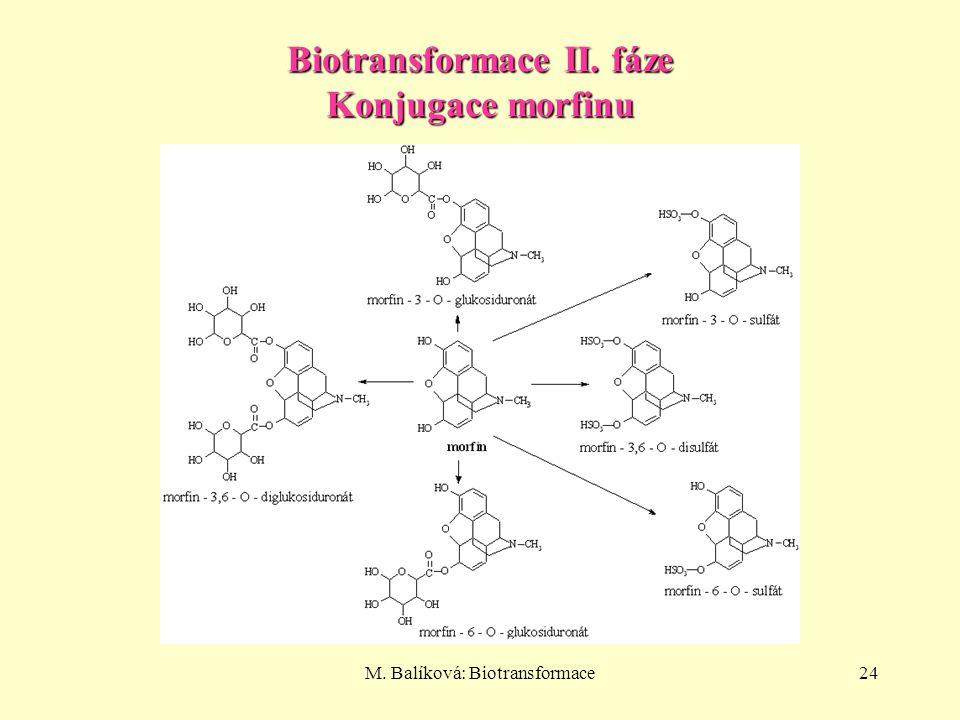Biotransformace II. fáze Konjugace morfinu