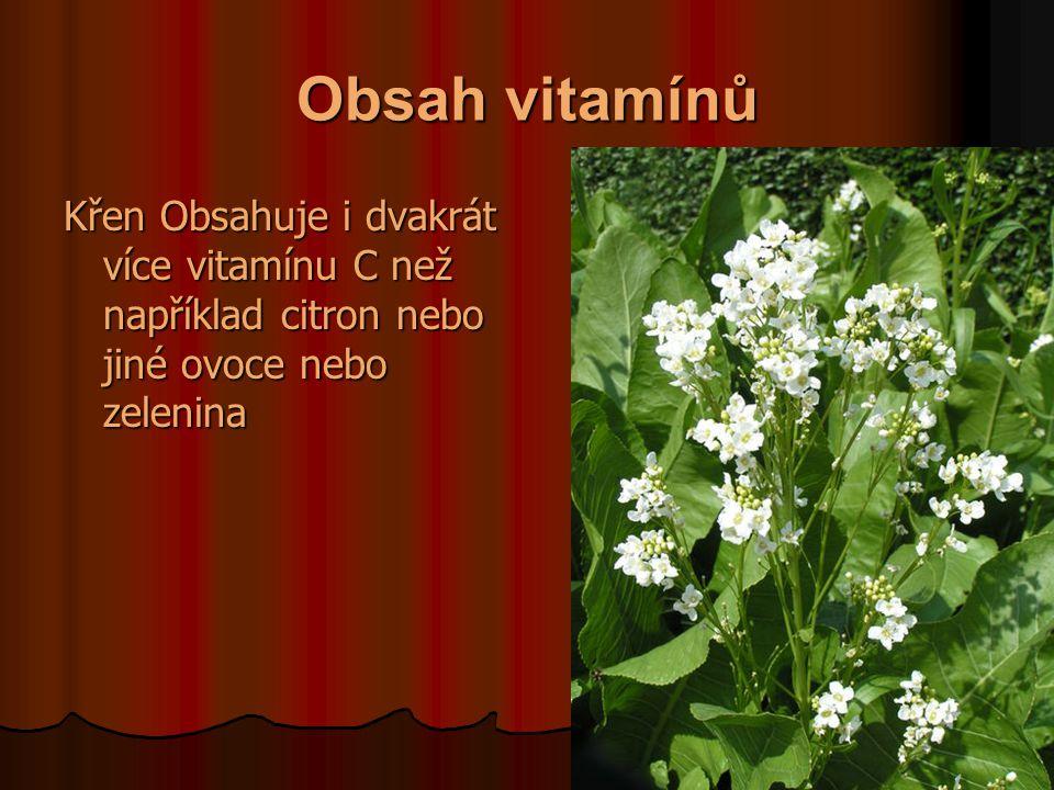 Obsah vitamínů Křen Obsahuje i dvakrát více vitamínu C než například citron nebo jiné ovoce nebo zelenina.