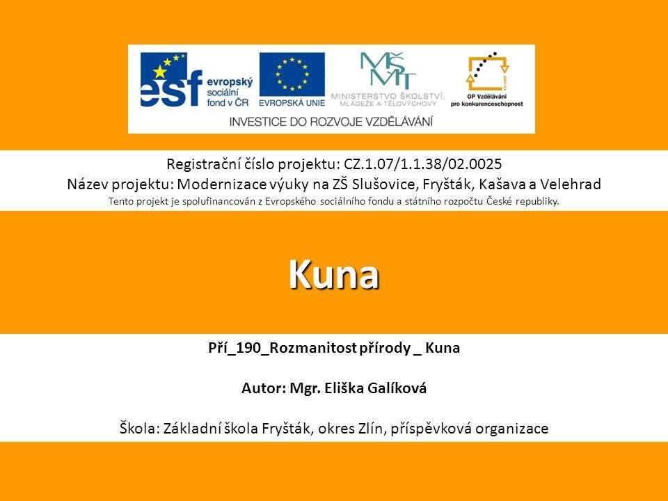 Pří_190_Rozmanitost přírody _ Kuna Autor: Mgr. Eliška Galíková
