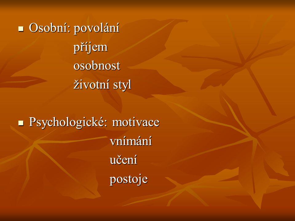 Osobní: povolání příjem osobnost životní styl Psychologické: motivace vnímání učení postoje
