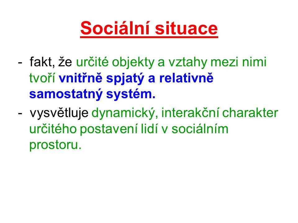 Sociální situace - fakt, že určité objekty a vztahy mezi nimi tvoří vnitřně spjatý a relativně samostatný systém.