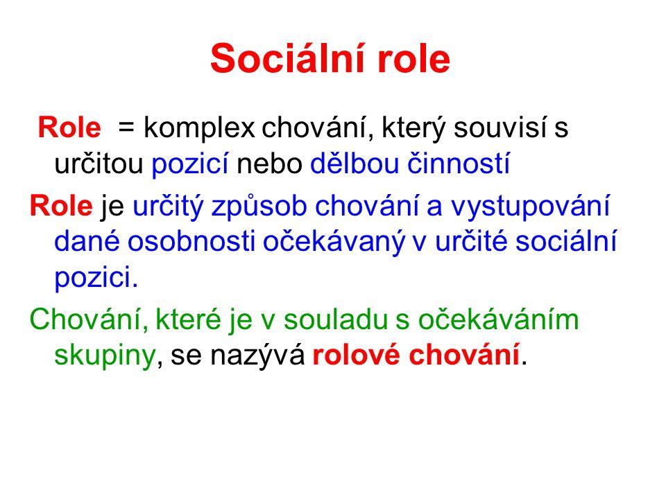 Sociální role Role = komplex chování, který souvisí s určitou pozicí nebo dělbou činností.