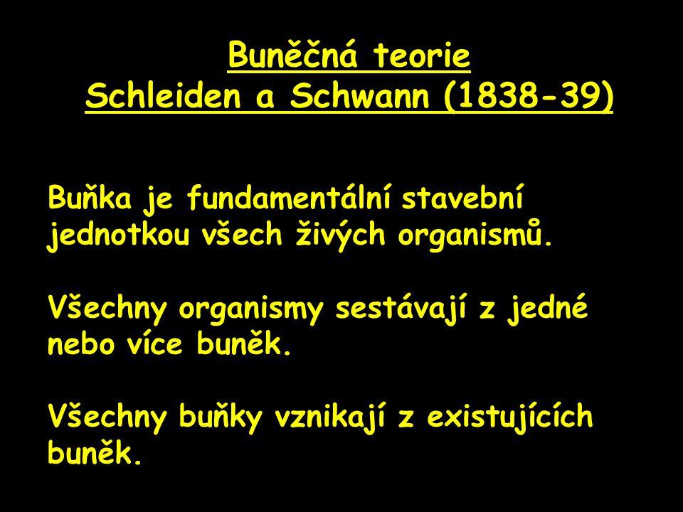 Schleiden a Schwann (1838-39)
