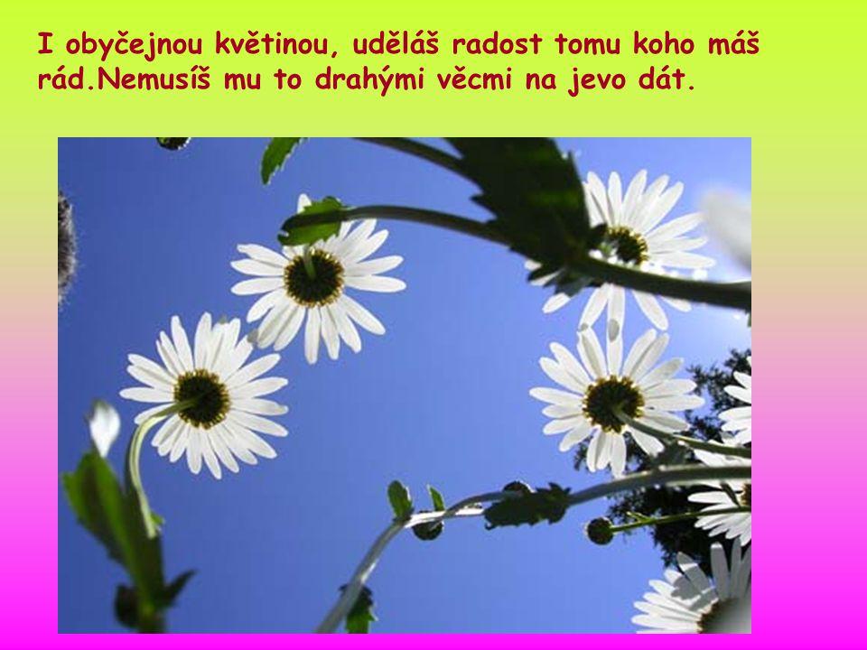 I obyčejnou květinou, uděláš radost tomu koho máš rád