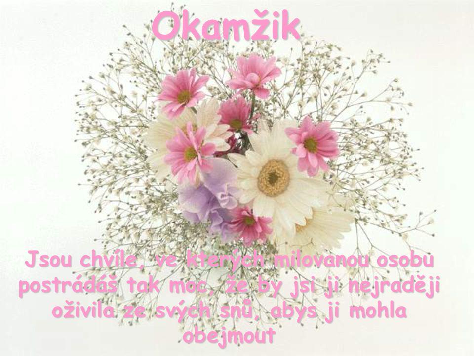 Okamžik Aus dem portugiesischen übersetzt.