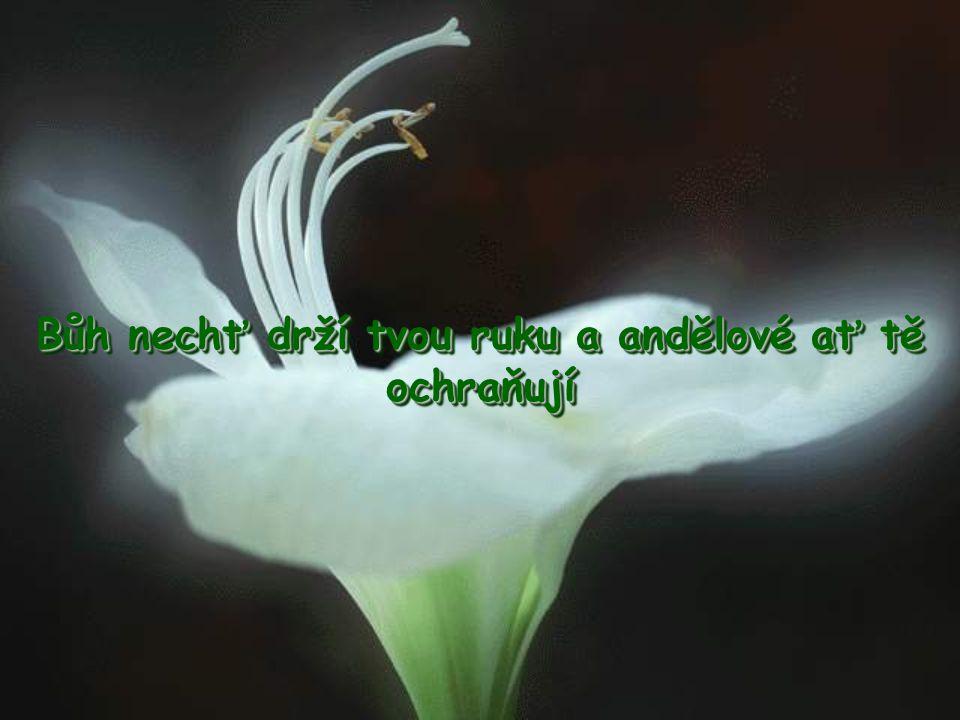 Bůh nechť drží tvou ruku a andělové ať tě ochraňují