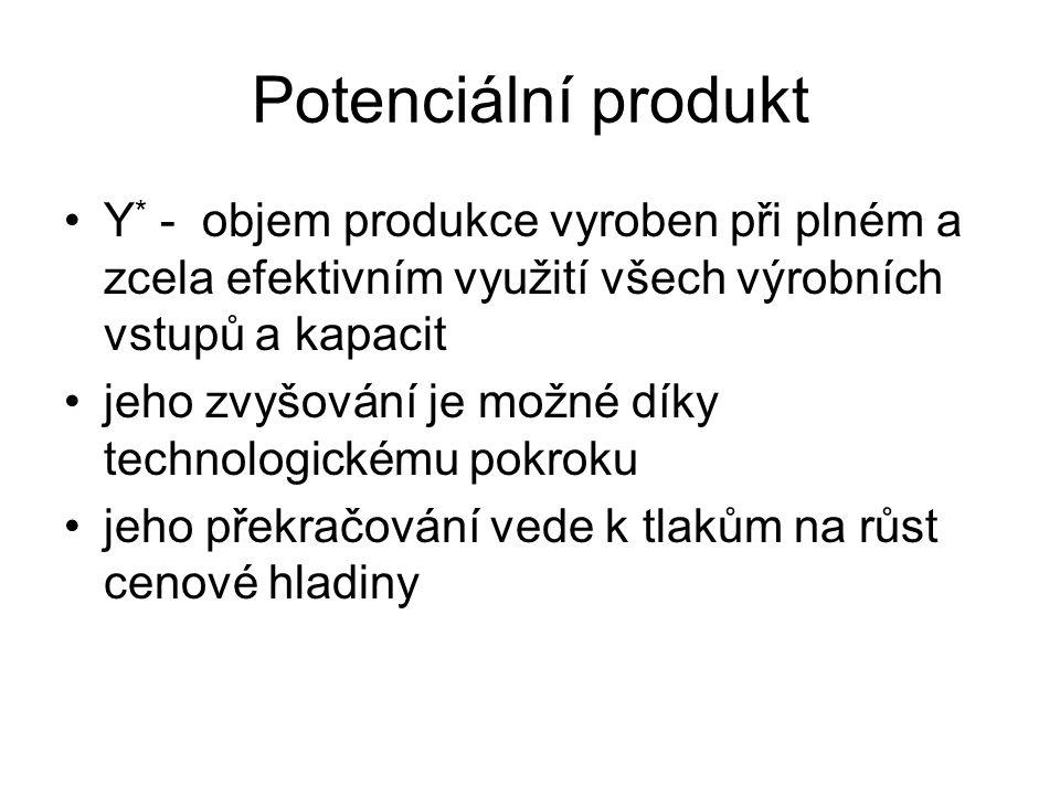 Potenciální produkt Y* - objem produkce vyroben při plném a zcela efektivním využití všech výrobních vstupů a kapacit.