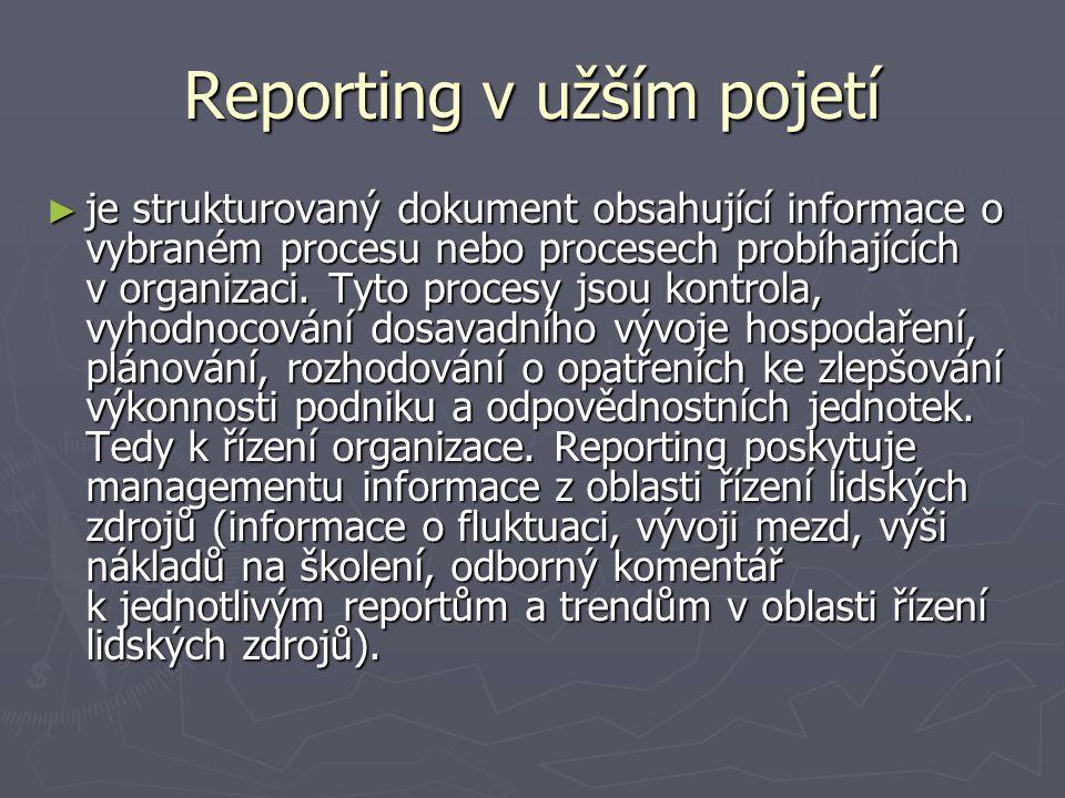 Reporting v užším pojetí