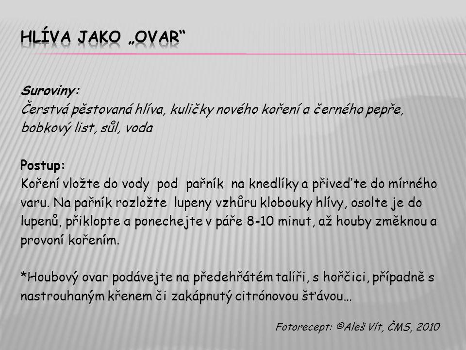 """Hlíva jako """"ovaR Suroviny:"""