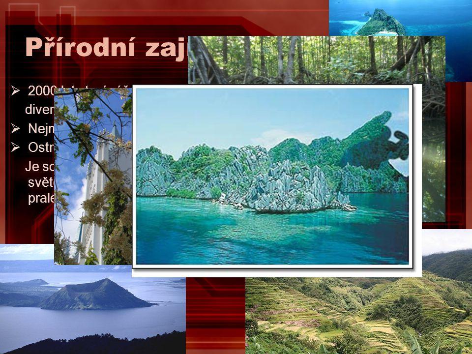 Přírodní zajímavosti 2000 let staré rýžové terasy Banaue Rice Terraces nazývané osmým. divem světa.
