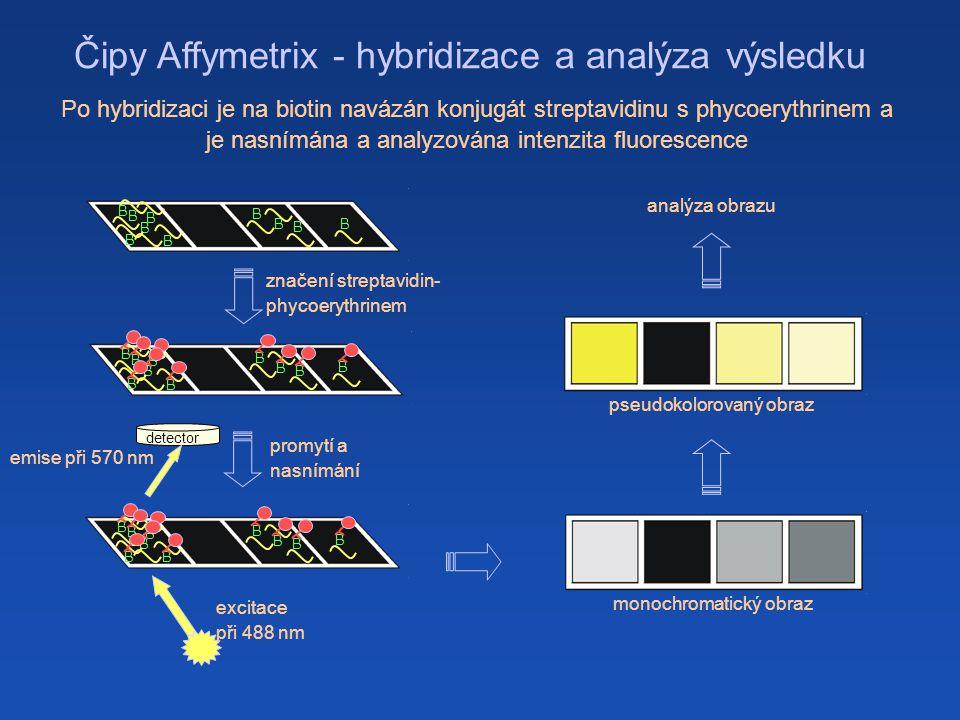Čipy Affymetrix - hybridizace a analýza výsledku