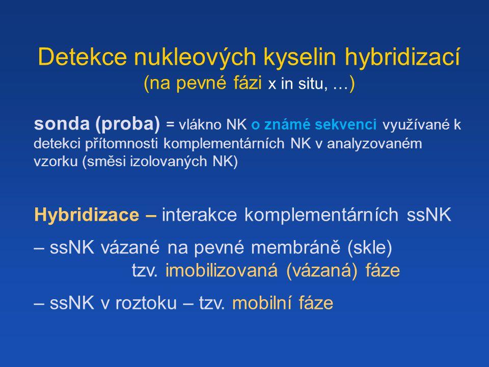Detekce nukleových kyselin hybridizací