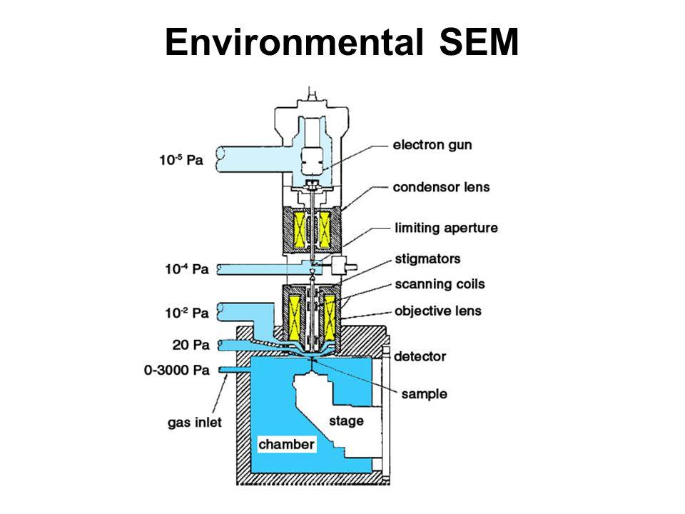 Environmental SEM