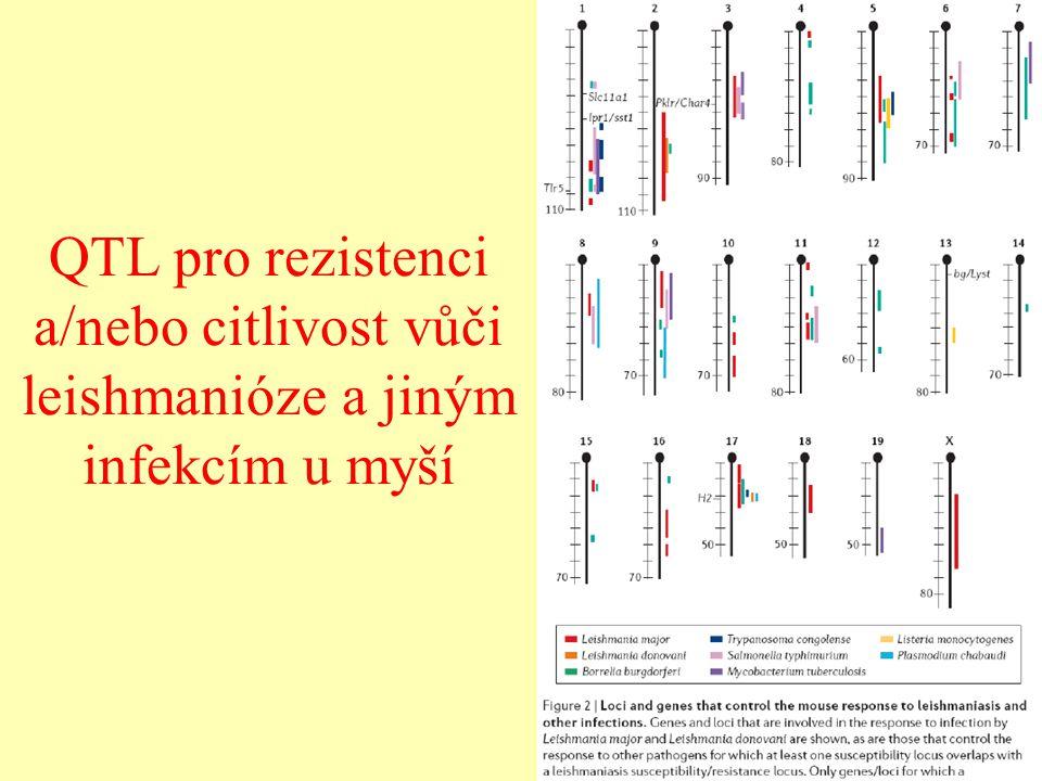 QTL pro rezistenci a/nebo citlivost vůči leishmanióze a jiným infekcím u myší