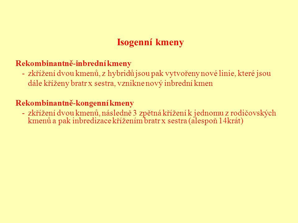 Isogenní kmeny Rekombinantně-inbrední kmeny