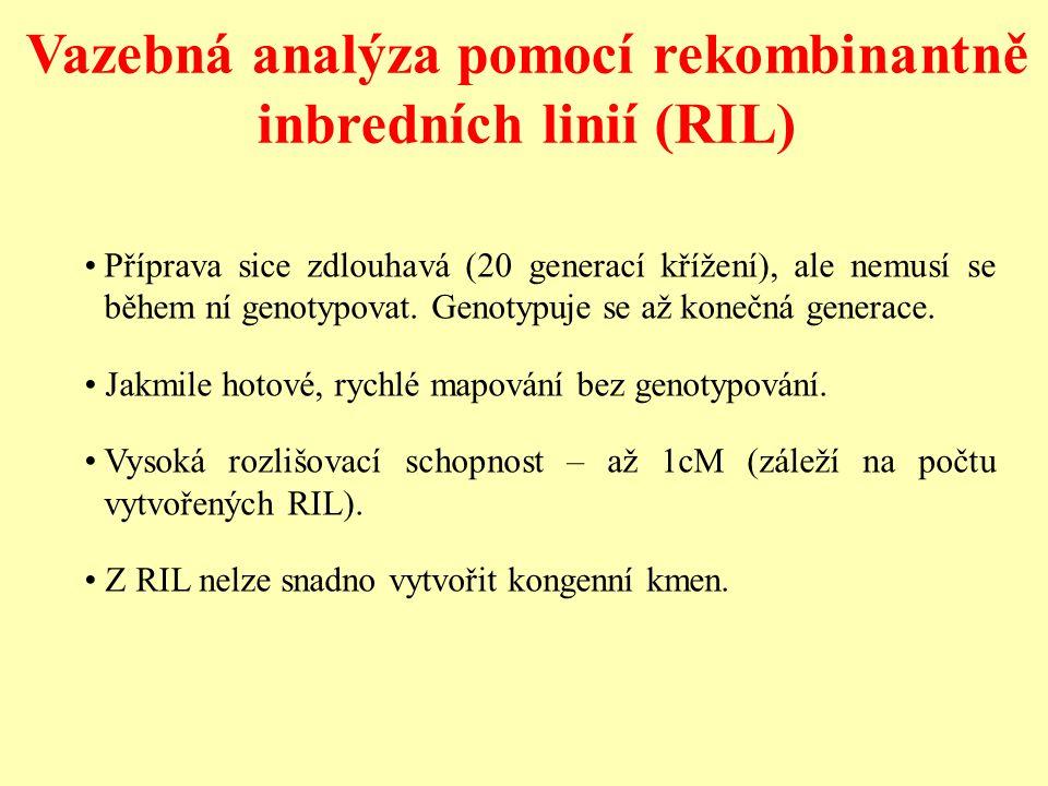 Vazebná analýza pomocí rekombinantně inbredních linií (RIL)