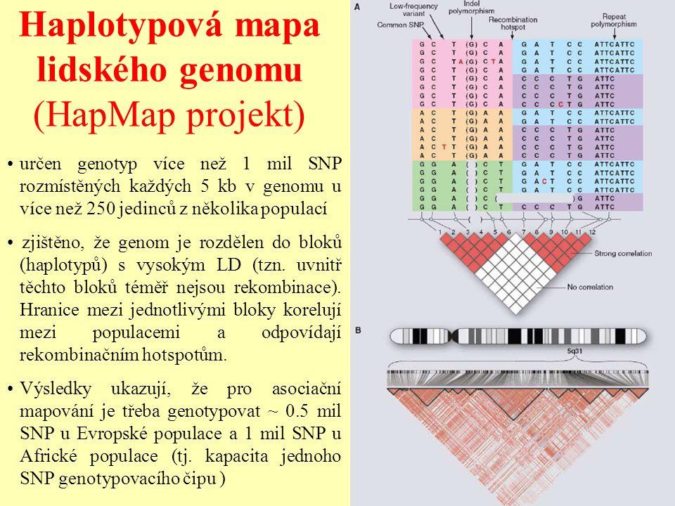 Haplotypová mapa lidského genomu (HapMap projekt)