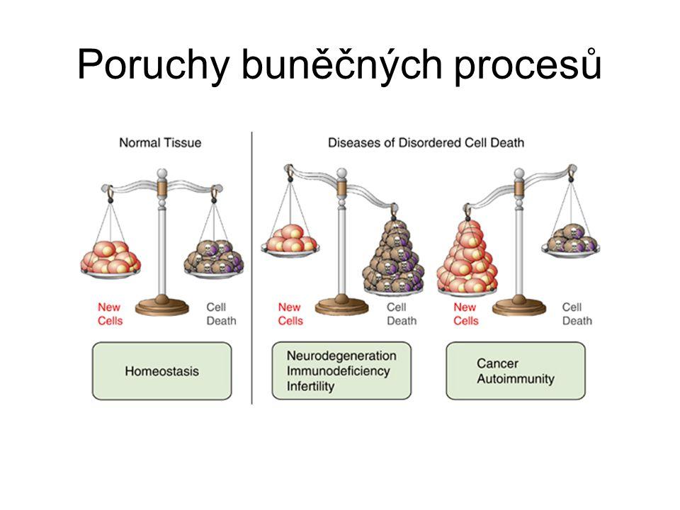 Poruchy buněčných procesů