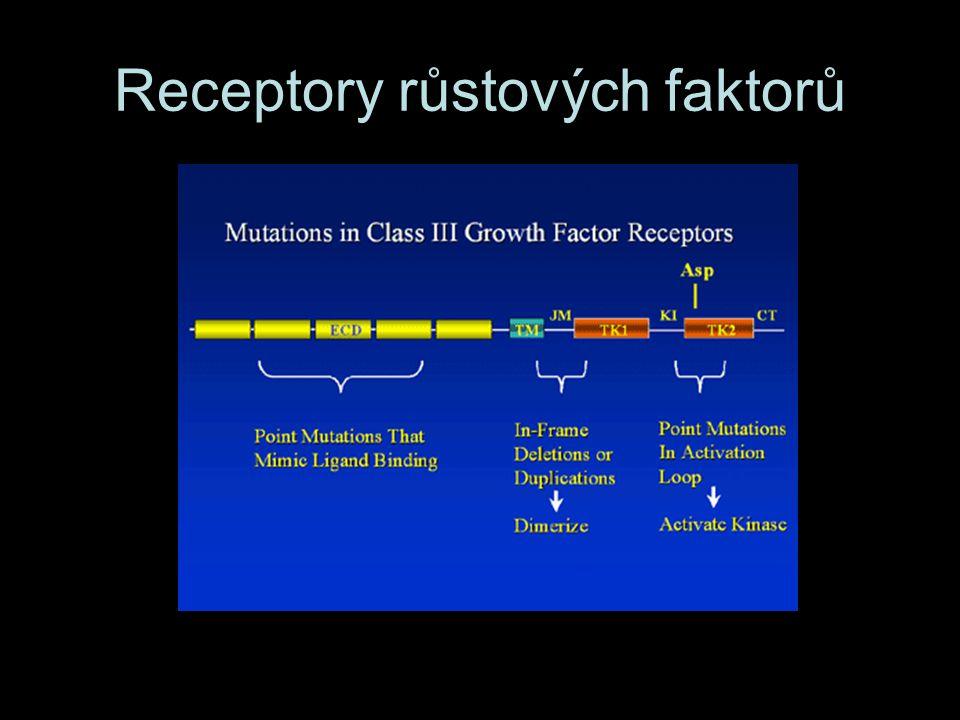 Receptory růstových faktorů