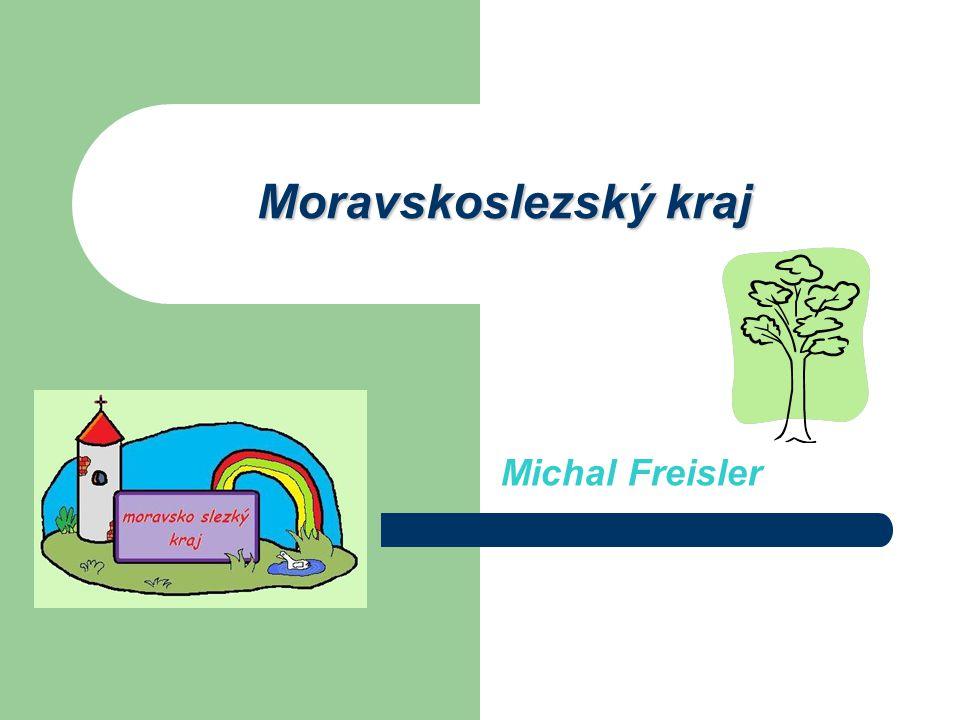 Moravskoslezský kraj Michal Freisler