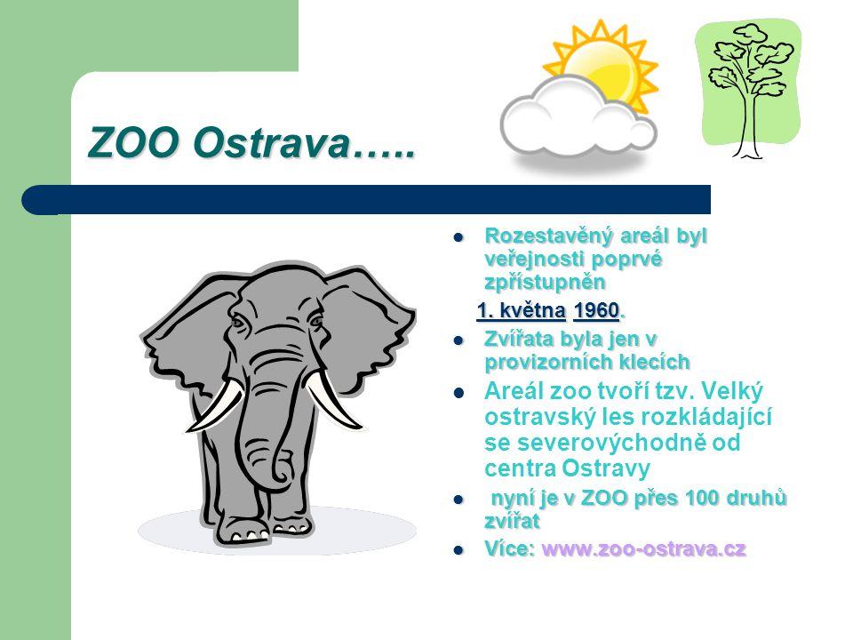 ZOO Ostrava….. Rozestavěný areál byl veřejnosti poprvé zpřístupněn. 1. května 1960. Zvířata byla jen v provizorních klecích.