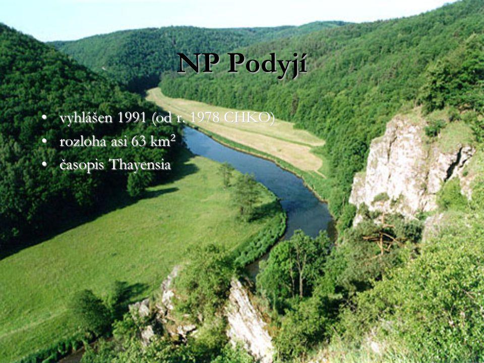 NP Podyjí vyhlášen 1991 (od r. 1978 CHKO) rozloha asi 63 km2