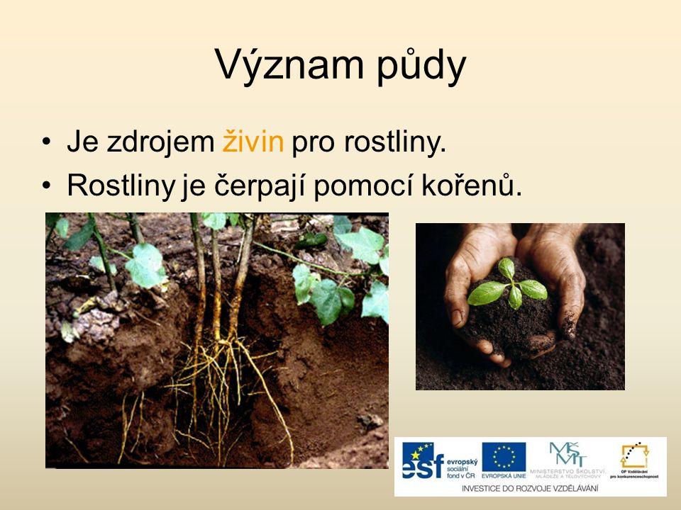 Význam půdy Je zdrojem živin pro rostliny.