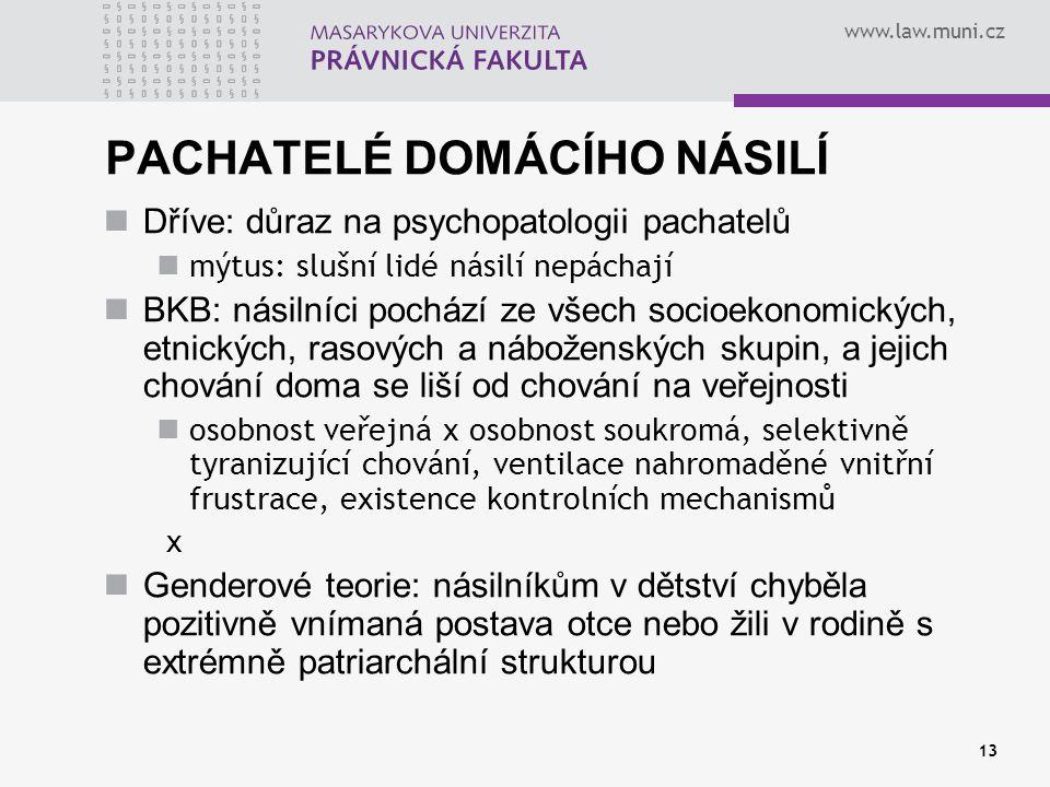 PACHATELÉ DOMÁCÍHO NÁSILÍ