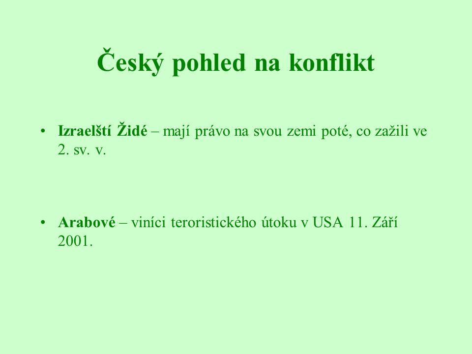 Český pohled na konflikt