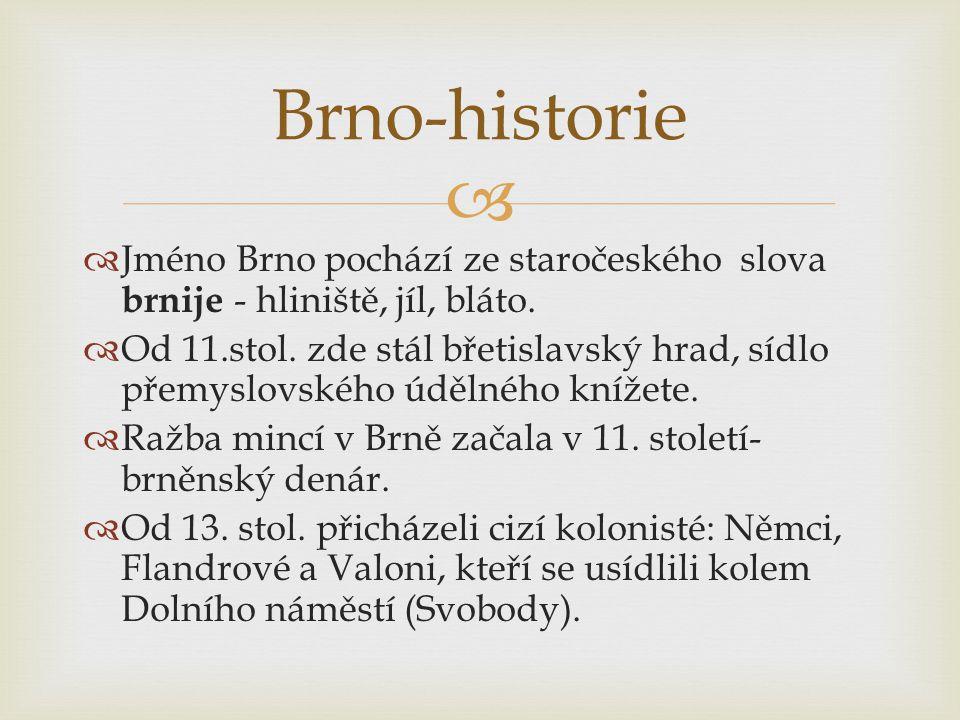 Brno-historie Jméno Brno pochází ze staročeského slova brnije - hliniště, jíl, bláto.