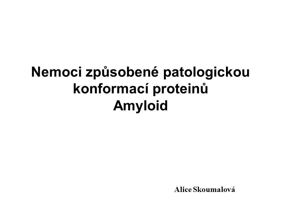 Nemoci způsobené patologickou konformací proteinů Amyloid