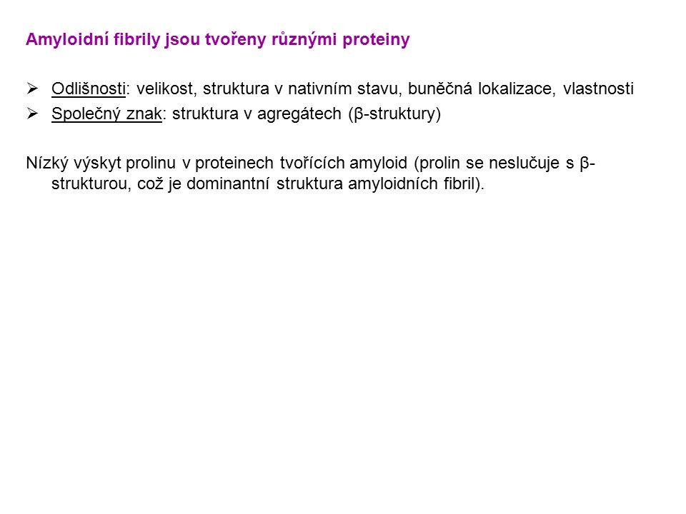 Amyloidní fibrily jsou tvořeny různými proteiny