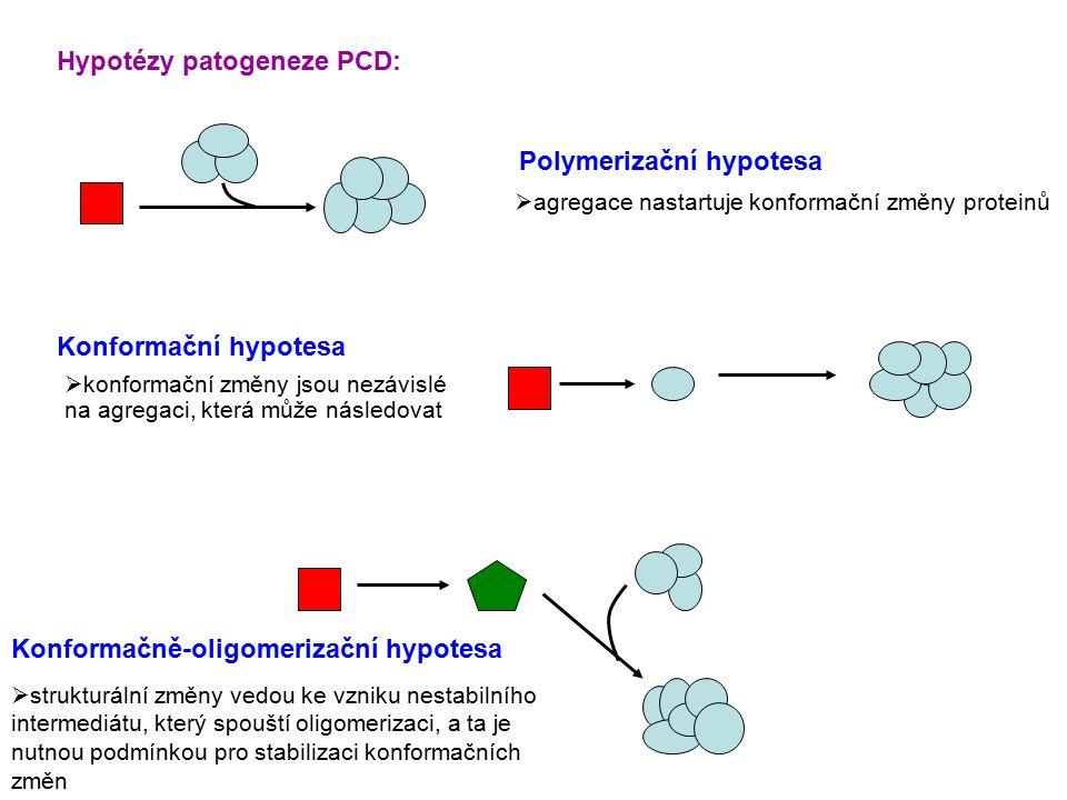 Hypotézy patogeneze PCD: