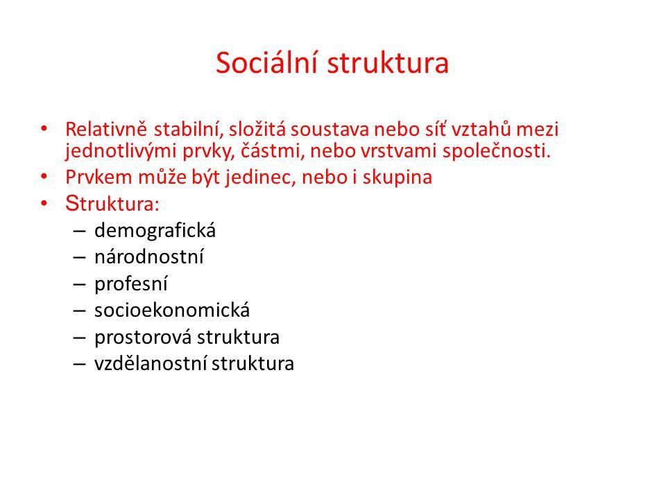 Sociální struktura Relativně stabilní, složitá soustava nebo síť vztahů mezi jednotlivými prvky, částmi, nebo vrstvami společnosti.