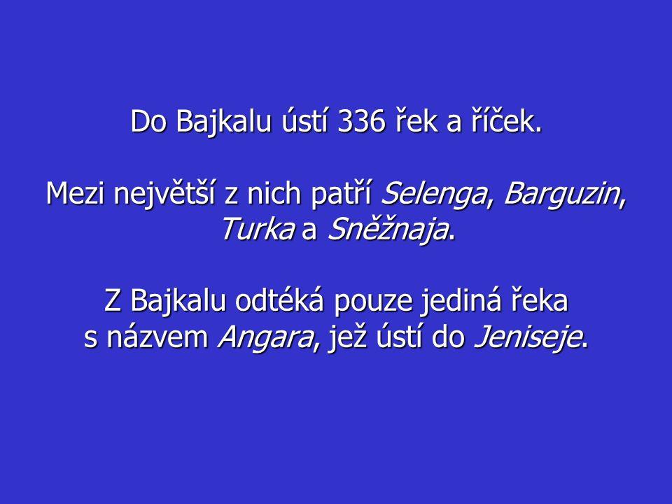 Do Bajkalu ústí 336 řek a říček.