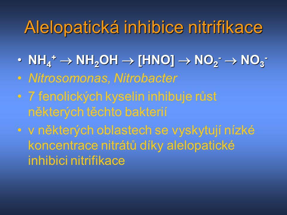 Alelopatická inhibice nitrifikace