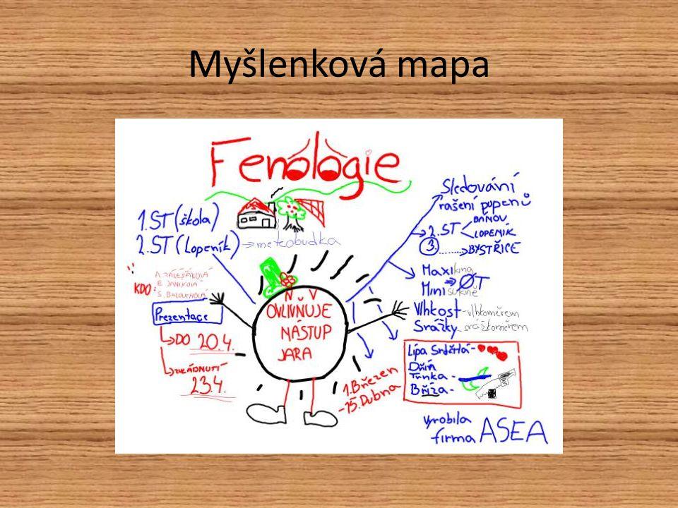 Myšlenková mapa