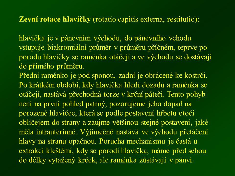 Zevní rotace hlavičky (rotatio capitis externa, restitutio):