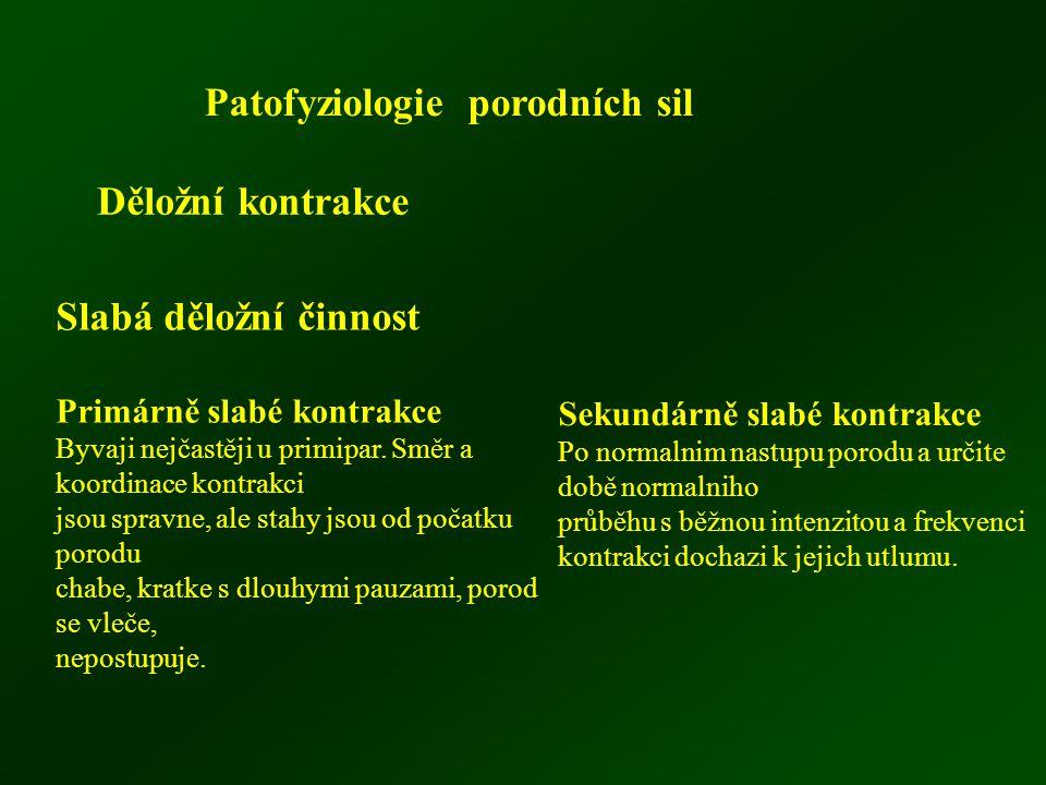 Patofyziologie porodních sil