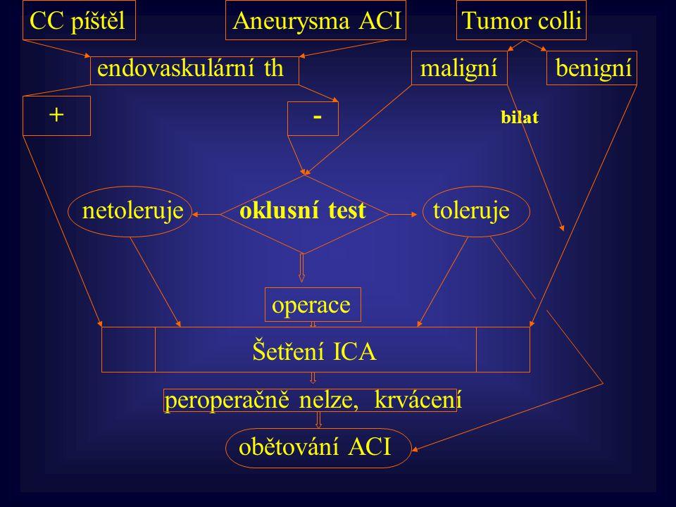 CC píštěl Aneurysma ACI Tumor colli