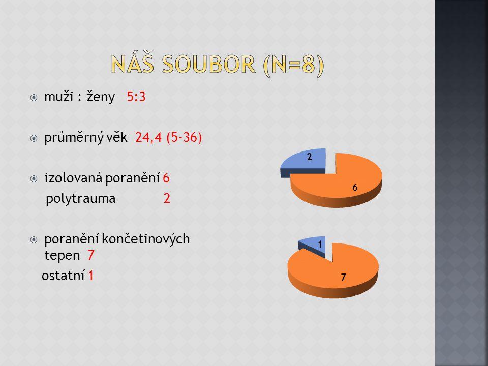 Náš soubor (N=8) muži : ženy 5:3 průměrný věk 24,4 (5-36)